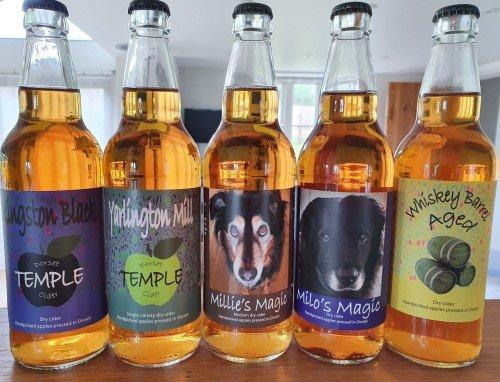 Temple Cider bottled Dorset craft ciders