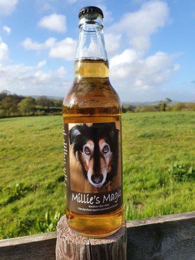 Millie's Magic craft cider